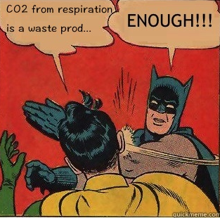 batman Co2 enough