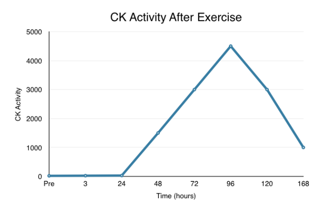 CK activity after exercise
