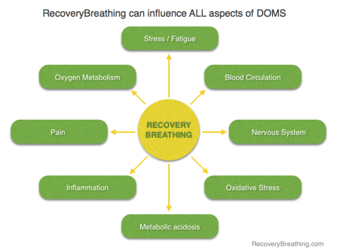 RecoveryBreathing elements