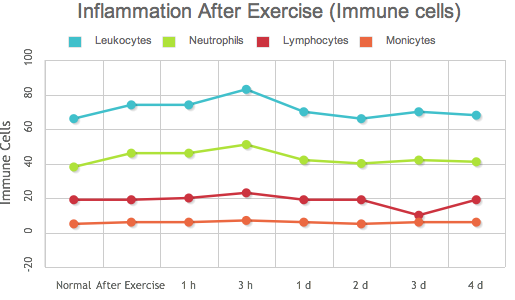 Inflammation after exercise (Immune cells)